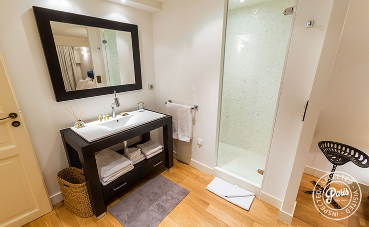 Ensuite bathroom at Latin Quarter Loft, Paris apartment rental, Latin Quarter